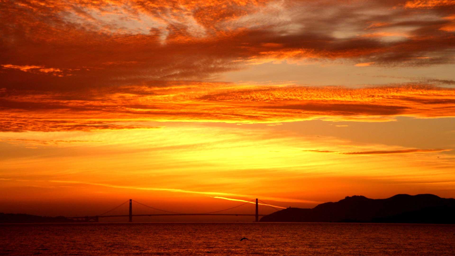 San Francisco Tour Hub